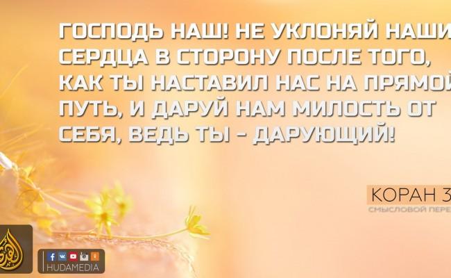 Bk2ynG1vp5I
