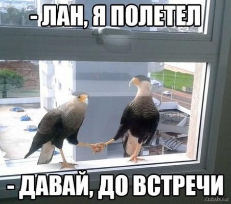 е1412673272_0154