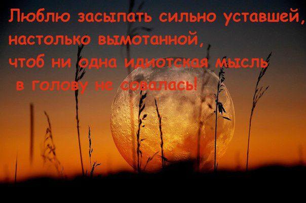 71siRIo2l_41
